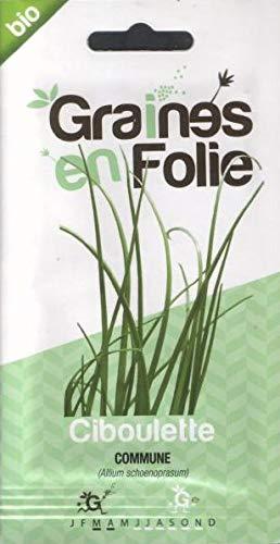 Ciboulette Commune - 100 Graines - SEM03 - Opportunité - Quantité Limité
