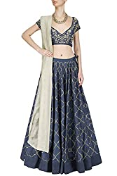 Fabron Navy Blue and Beige Pita Work Lehenga Set