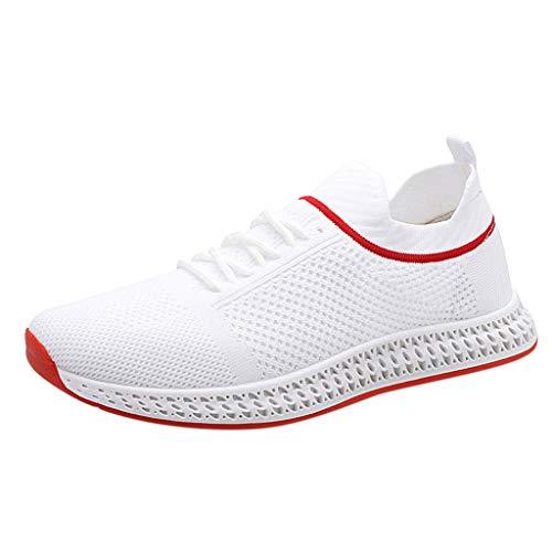 Dasongff Mesh Herrenschuhe Sneakers Mode Volltonfarbe Socken Schuhe Stricken Oberer Breathable Lace Up Leichte Sport Laufschuhe Bequeme Air Laufschuhe (Gym Short Stricken)