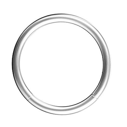 Piersando Universal Piercing Segmentring Smooth Septum für Tragus Helix Ohr Nase Lippe Brust Intim Scharnier Clicker Ring Chirurgenstahl 1,2 x 12mm Silber