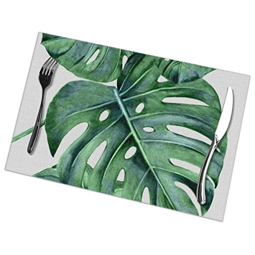 MrRui Table Mats Set of 6 Esstisch-Platzsets Monstera Placemats for Dining Table Washable Table Mats 12x18 Inch Green Square Dinner Plate