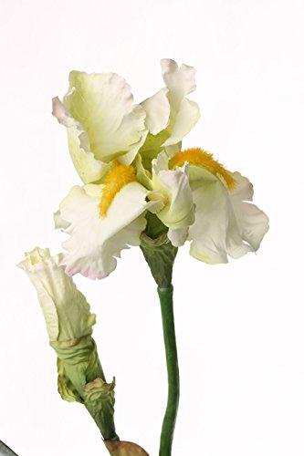 artplants – Künstliche Iris, Creme, Deluxe, 70 cm – Deko Schwertlilie/Kunstblume
