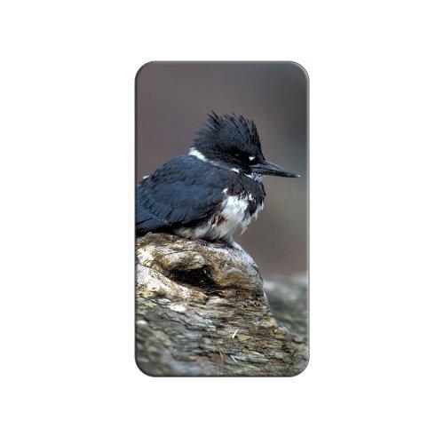 Gürtel Kingfisher–Vogel Metall Revers Hat Shirt Handtasche Pin Krawattennadel Pinback (Vogel-gürtel)