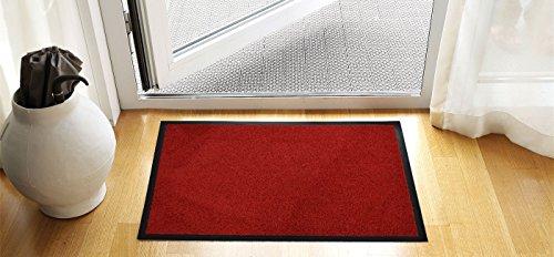 Premium Fußmatte in attraktiver Optik türkis, Schmutzfangmatte 40 x 60 cm, Fußabtreter, Türmatte...