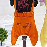 AHIMITSU Puppy Pet Supplies Misc New clothes, dog clothes, pet supplies, pet clothes, boys, four-legged jeans (Color : Pink, Size : XXL) Apparel (Color : Black, Size : XXL)