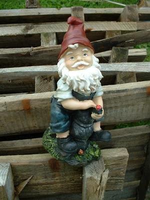 4 Lustige Gartenzwerge Gnome 22cm NEU Gartenzwerg NEU - 5