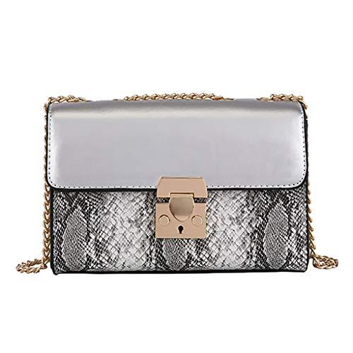 Finebo Paket Damen Umhängetasche Mode Schlange Farblich passendes, quadratisches Päckchen Brieftasche Clutch Bag Messenger Bag  Höhe / 14CM Länge / 20 cm Breite / 9 cm (Silber) -
