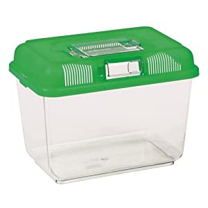 Reptile on Tour Transport and Feeding Box - Medium - 24 × 17 × 16 cm