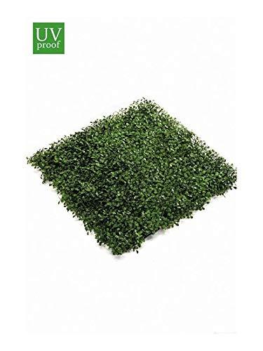 artplants.de Lot 3 x Plaque de buis Artificiel Heinz sur Grille en Plastique, 50x50cm - 3 pcs Buis Plastique - Plante Artificielle buis