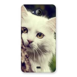 Enticing Cat Hide Back Case Cover for Canvas Play Q355