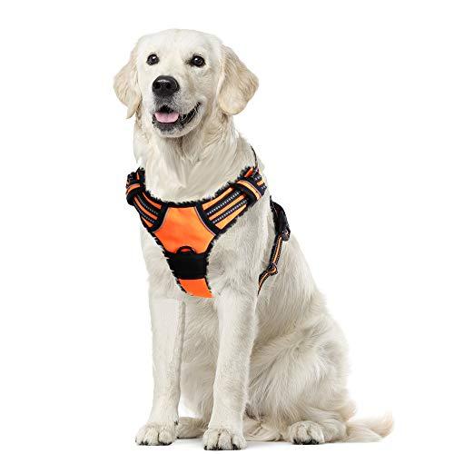 Eagloo Hundegeschirr Geschirr für Große Hunde Anti Zug Mittelgroße Brustgeschirr No Pull Sicherheitsgeschirr Auto Dog Harness Labrador Welpengeschirr Joggen Ausbruchsicher Weich Gepolstert Orange XL