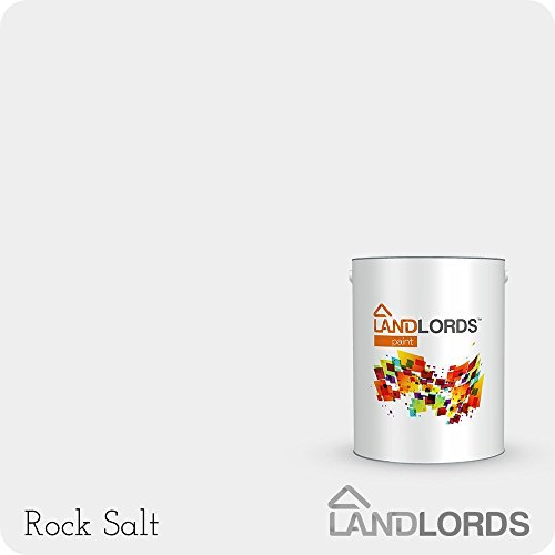 landlords-matt-paint-25l-rock-salt