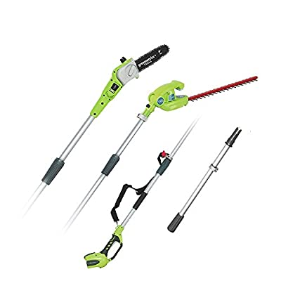 Greenworks Tools and Hedge Shears on Pole Pruner 1300607 40 V Lithium-Ion Cordless (No Battery or Charger)