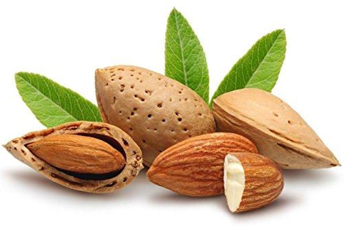 Dryfruit Mart Almonds 1000g