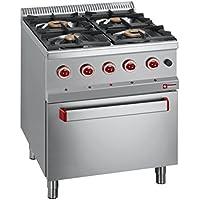 Modular Cocina de gas con 4 quemadores a gas horno GN2/1 invitados Lando