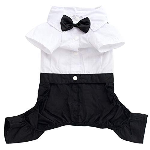 , modischer Mantel für Haustiere, Western-Stil, Smoking aus Baumwolle, kleine Fliege, Wie abgebildet, XXL ()