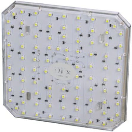 2-Pin LED Cluster Light, Warm White, 60 mA, 230 V ac SQ16w