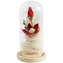 YANKAN Botella De Cristal De Luz, Cubierta De Vidrio Creativo con Paisaje Micro Luz Flores