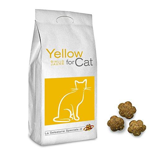 Pet's Planet Yellow for Cat Croquettes pour Tous Les Chats, 2 Kg