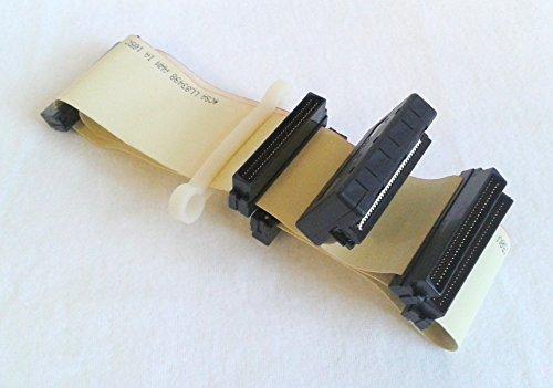 SCSI III Kabel intern 4Geräte mit Terminator