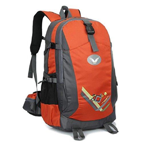 Z&N Backpack Neue Hochwertige Nylon Outdoor Travel Bergsteigen Rucksack Fitness Sport Radfahren Camping Party GepäCk Tasche Mehrzweck-Student Tasche B