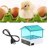 SODIAL digitale temperatura piccolo brooder 4 mini focolaio uovo incubatrice Hatcher per pollo anatra uccello colomba quaglia spina europea