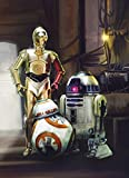 Komar Wall Mural Photo Wallpaper - Star Wars Three Droids - 1.84x2.54 m 4-447
