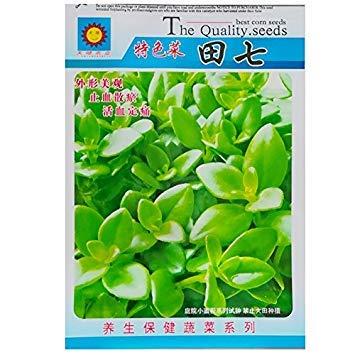 2018Hot Sale Chinesische Panax notoginseng pseudo-ginseng Samen, 500Samen, Original Pack, chinesische Kräuter Radix notoginseng - Ginseng-perle