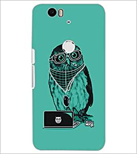 PrintDhaba Owl D-5401 Back Case Cover for HUAWEI NEXUS 6P (Multi-Coloured)