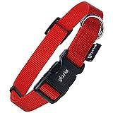 Gloria verstellbares Nylon-Hundehalsband (Large) (Rot)