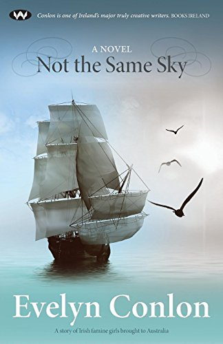 Not the Same Sky: A novel