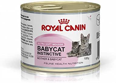 Royal Canin : Alimentation Chaton : Fhn Wet Babycat 195g