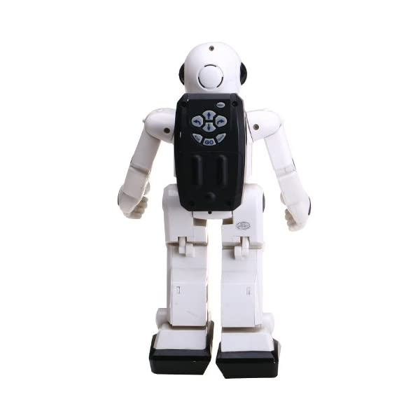 41q8xjBofvL. SS600  - World Brands Robot Radio Control