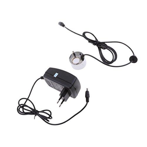 MagiDeal Ultrasonido Brumizador Humidificador Fuente Estanque 300ml / h Enchufe-EU
