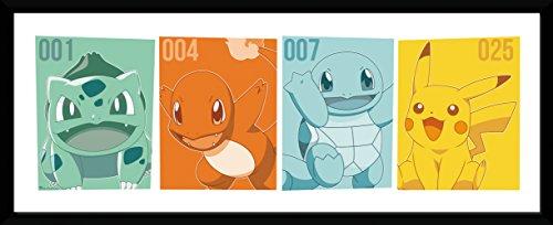 GB-eye-Pokemon-Kanto-asociados-Impresin-enmarcada-varios-75-x-30-cm