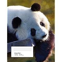 Help!: Panda - Climate Crisis
