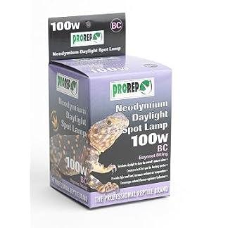 ProRep BC Neodymium Daylight Spot Lamp, 100 Watt 7