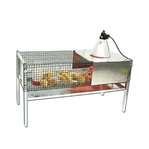 Gabbia recinto per pulcini completo di accessori amazon for Recinto per cani amazon