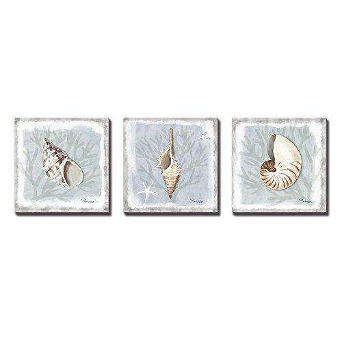 WESIATOR - Bathroom Wall Art Seashell Painting Coastal Decor Ocean Beach Theme Picture, Canvas Prints, Ready to Hang (30x30cmx3pcs)