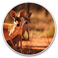 Awesome Vinyl Stickers (Set of 2) 7.5cm - Kangaroo Australia Wild Animal Cute Fun Decals for Laptops,Tablets,Luggage,Scrap Booking,Fridges,Cool Gift #8528
