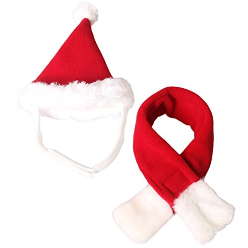 Elegante Katzen Weihnachtsmütze und Schal Set Weihnachtskostüm Hut für Hund (S-passt für Halsgröße innerhalb von 42cm)
