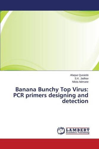 Banana Bunchy Top Virus: PCR primers designing and detection
