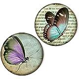 Zwei magnets, Schmetterlinge