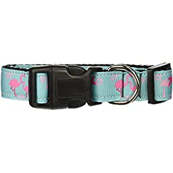 Mirage Pet Products Mardi Gras Nylon Band Hundehalsband, Medium