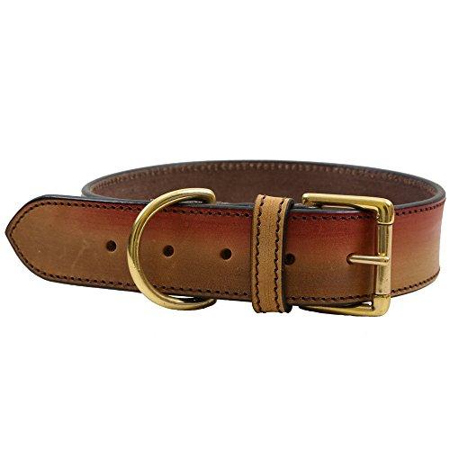 PetSutra Leder Dog Halsband Aurora-Premium Handgefertigt Fashion Halsband Verstellbar (Multi Größe), Large (18-22 inches), Aurora