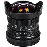 Viltrox 7,5mm F2.8Lente de ojo de pez para Panasonic y Olympus M43Cámaras caliente
