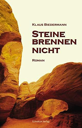 Steine brennen nicht: Romantrilogie - 1. Band (D Brennen)