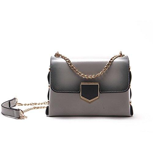FZHLY Retrò Spalla Moda Messenger Bag Semplice Mini-lock Borsa Piccola Piazza,Pink Gray