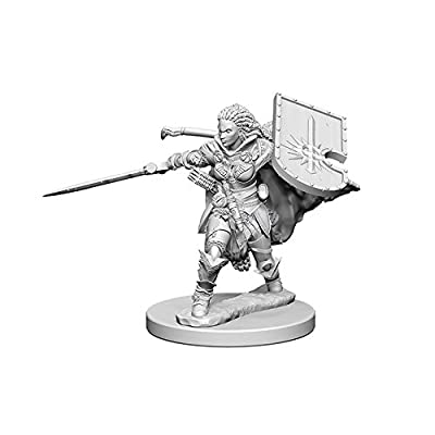 Pathfinder: Deep Cuts Unpainted Miniatures: Human Female Paladin