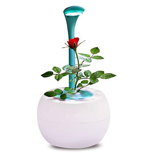 Musikalische Blumentöpfe, drahtlose Bluetooth-Blumentöpfe, die singen. Subwoofer Durch das Berühren von echten Pflanzen kann dieser Blumentopf mit einem Rhythmus einen schönen Klavierklang erzeugen. (Musikalische Elektronik)